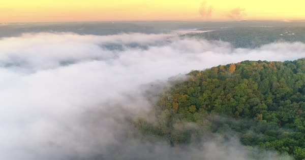 An early morning aerial establishing shot of a foggy Western Pennsylvania forest.   Royalty-free stock video