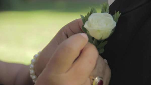 Close-up man corsage Royalty-free stock video