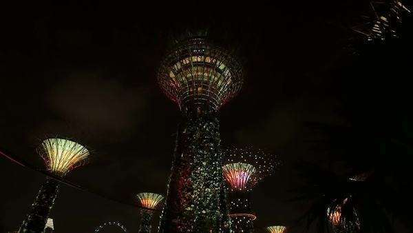 Gardens by the bay park at night lights show low angle view wide shot Royalty-free stock video