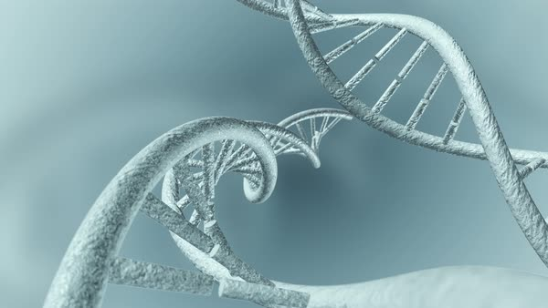 Animation of DNA Royalty-free stock video