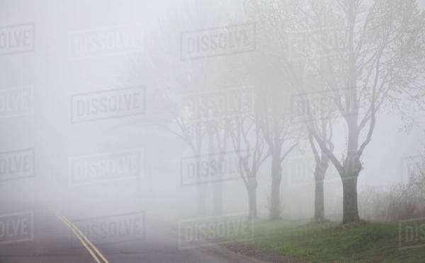 Dense fog over a road; Duluth, Minnesota, United States of America Royalty-free stock photo