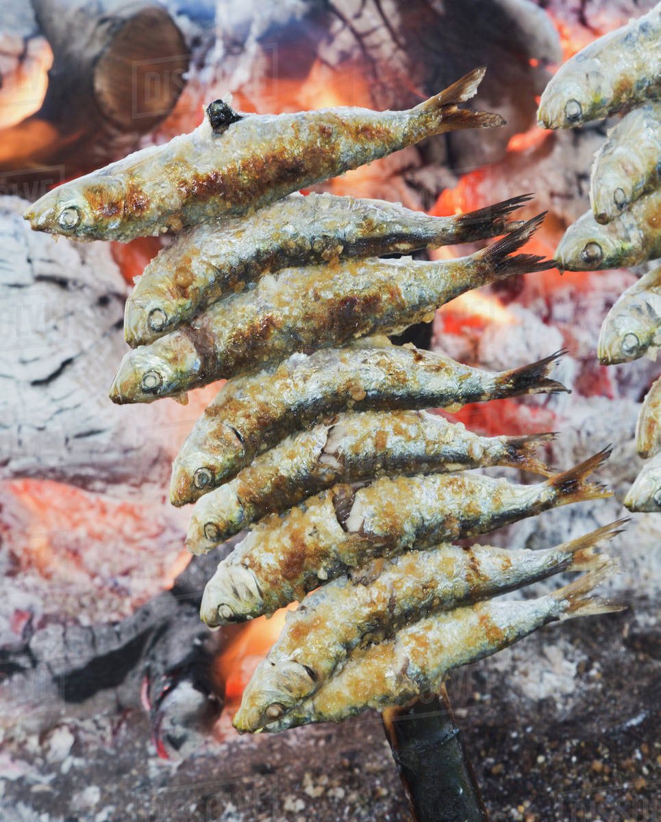 a skewer of sardines roasting over an open fire torremolinos malaga