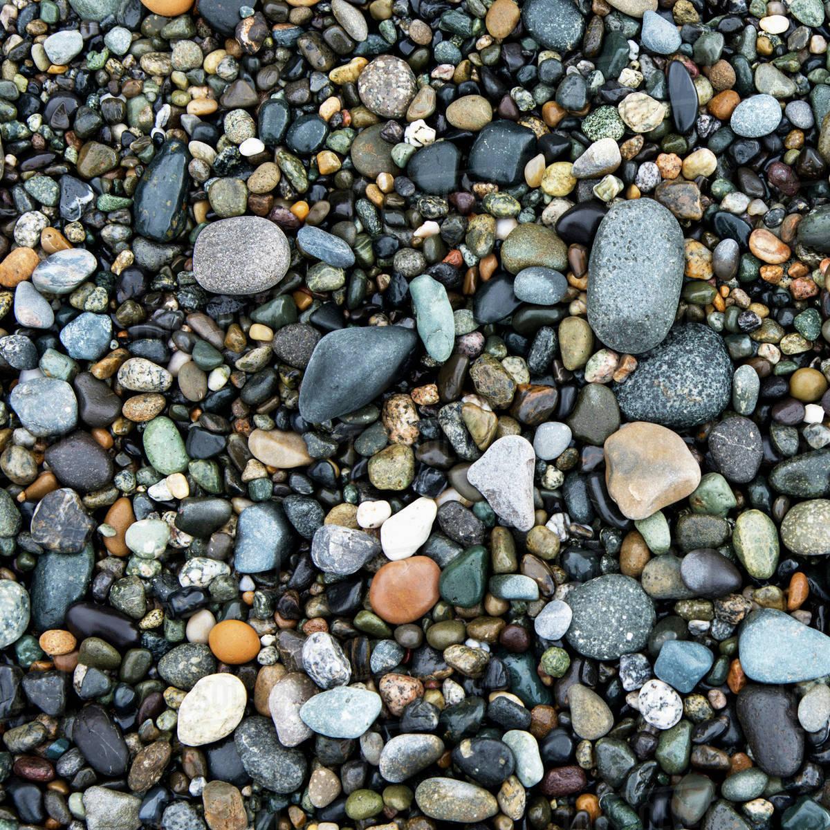 Wet Rocks On The Beach