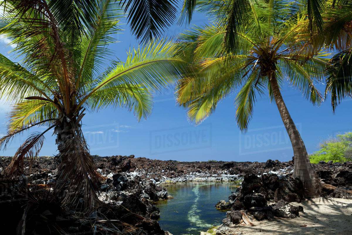 Makalawena Beach In Puu Alii Bay Big Island Hawaii United States Of America Stock Photo Dissolve