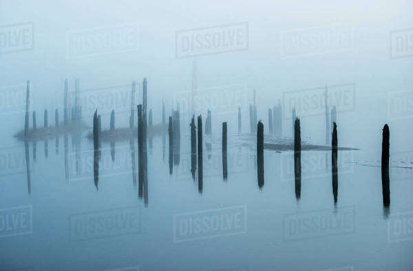 Old pilings disappear into the mist; Astoria, Oregon, United States of America Royalty-free stock photo