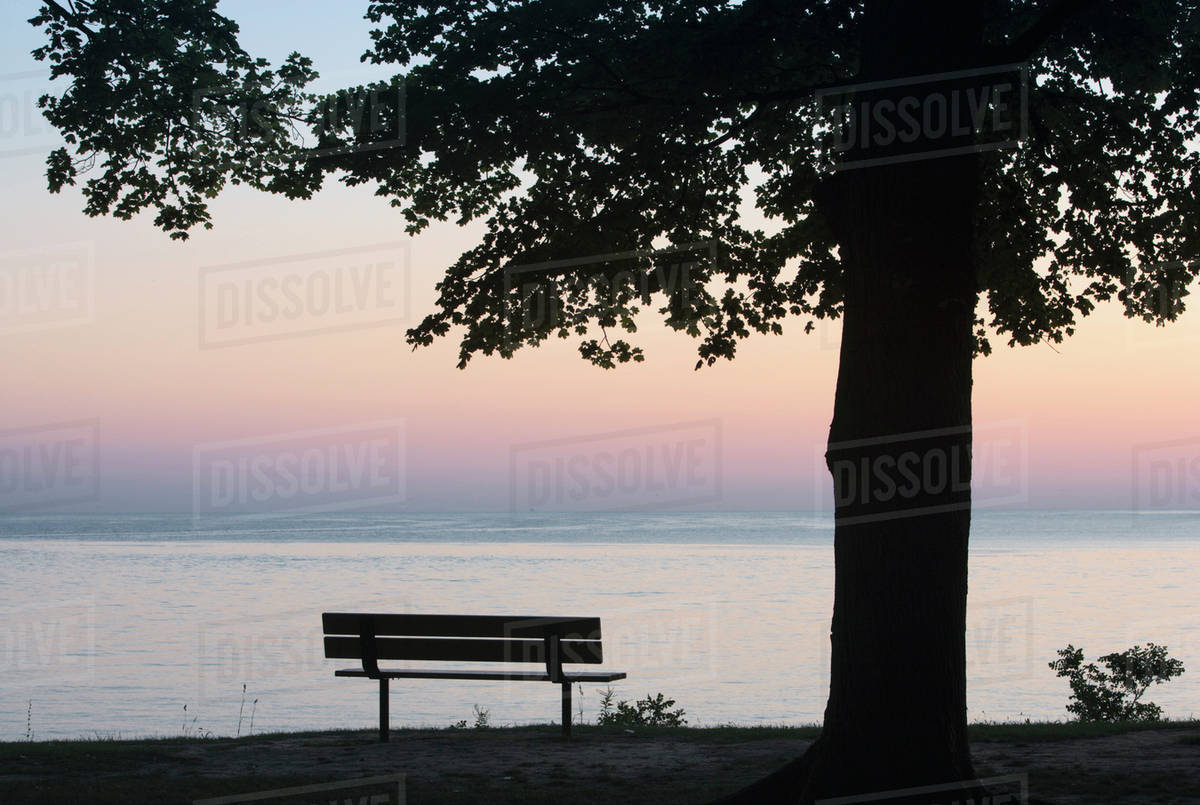 Park And Bench On The Shores Of Lake Ontario Niagara On The Lake