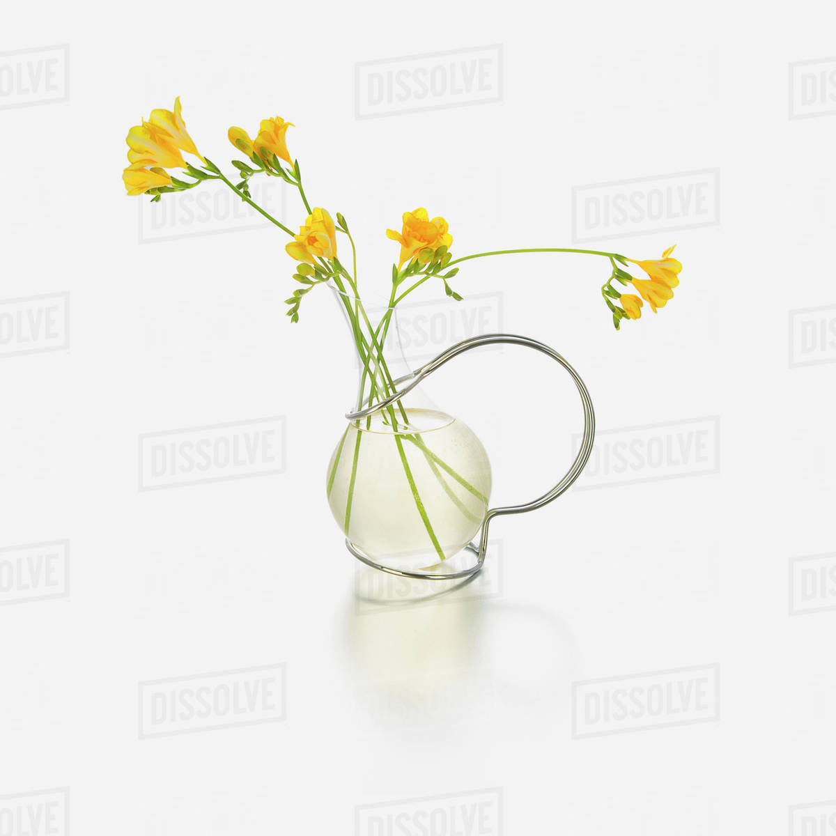 Yellow flowers in a glass vase against a white background  sc 1 st  Dissolve & Yellow flowers in a glass vase against a white background - Stock ...