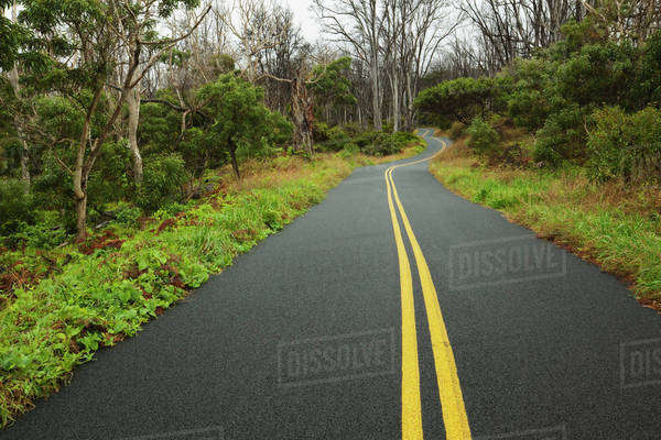 Mauna Loa Road, Hawaii Volcanoes National Park; Island of Hawaii, Hawaii, United States of America Royalty-free stock photo