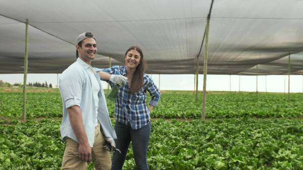 Portrait of young happy proud farming couple on there lettuce farm. Royalty-free stock video