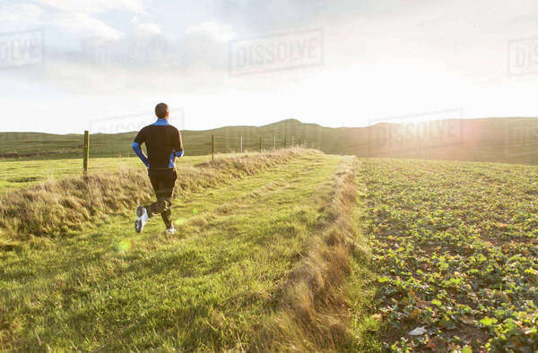 Rear view of man jogging on grassy field during sunny day Royalty-free stock photo