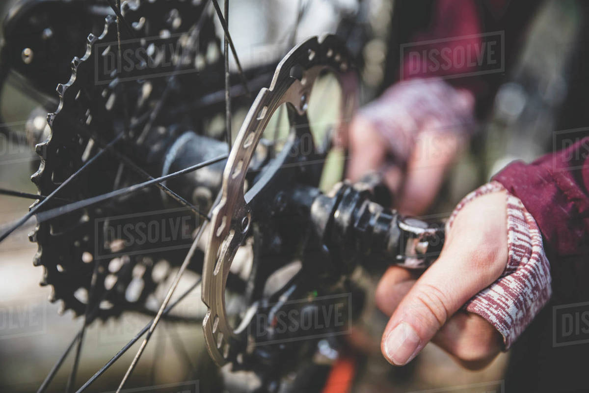 Cropped image of woman repairing mountain bike in forest Royalty-free stock photo