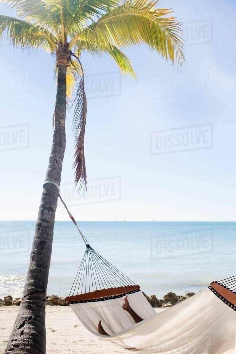 Hammock On Sandy Beach Orada Florida Keys Usa