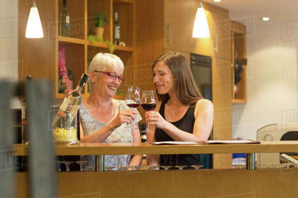 Women at counter in wine bar making a toast Royalty-free stock photo