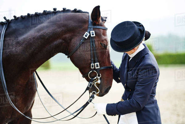 Female rider petting dressage horse in equestrian arena Royalty-free stock photo