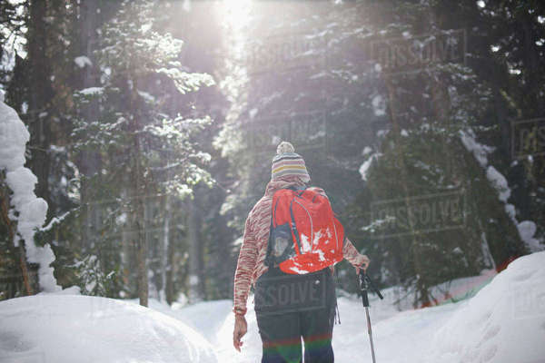 Hiker hiking in snow covered forest, Lake Louise, Canada Royalty-free stock photo