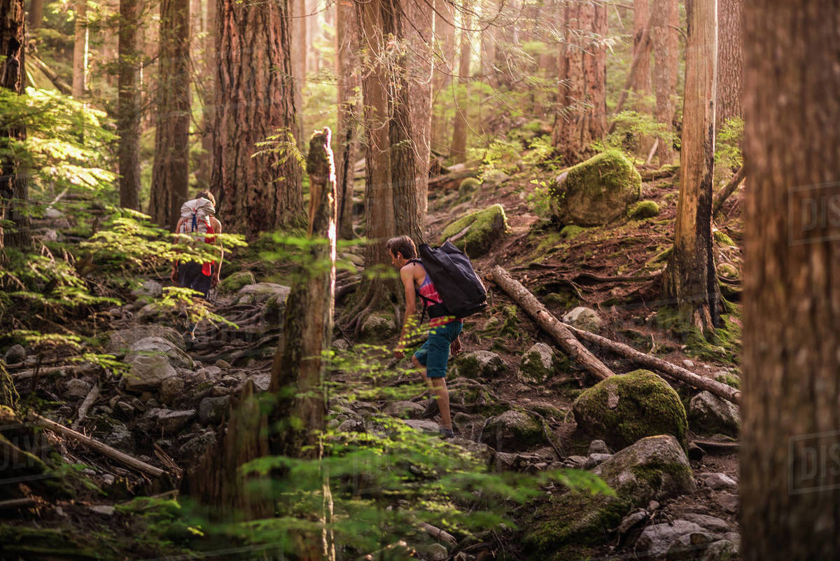Rock climbers walking through forest, Squamish, Canada Royalty-free stock photo