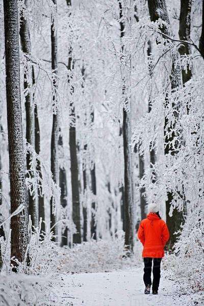 Mature woman in forest in winter snow Royalty-free stock photo