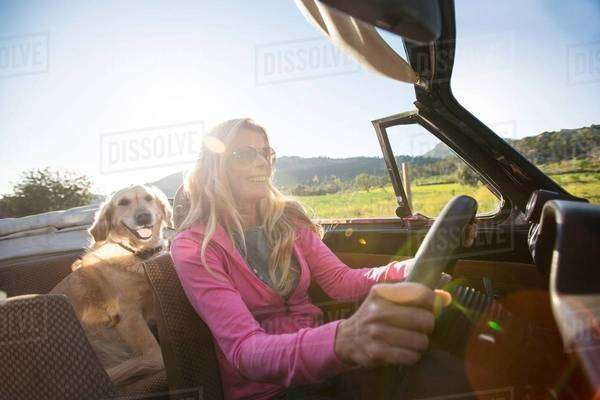 Mature woman and dog, in convertible car Royalty-free stock photo