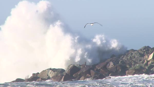 Large storm waves crashing on rocky inlet pier at Pacific Ocean with seagulls flying. Royalty-free stock video