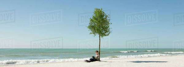 Boy reading book under tree growing on beach Royalty-free stock photo