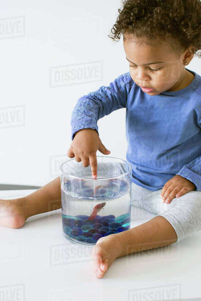 Toddler girl playing with pet goldfish Royalty-free stock photo