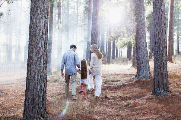 Family holding hands and walking in sunny woods Royalty-free stock photo