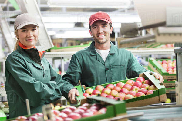 Portrait smiling workers with boxes of red apples in food processing plant Royalty-free stock photo