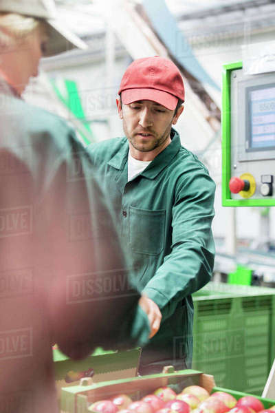 Workers examining apples in food processing plant Royalty-free stock photo