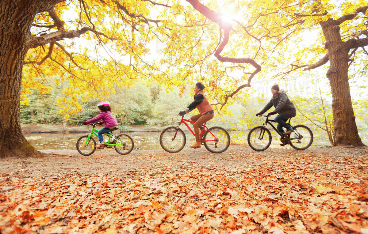 Young family bike riding in autumn park - Stock Photo - Dissolve