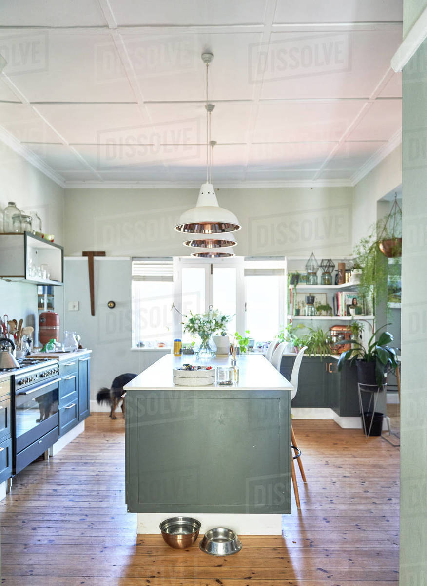 Kitchen with kitchen island and dog bowls Royalty-free stock photo