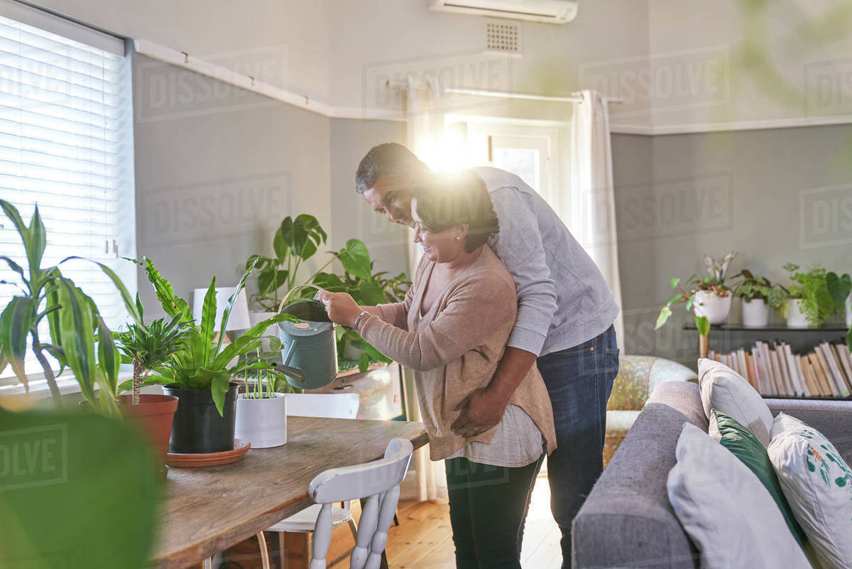 Affectionate couple tending to houseplants in dining room Royalty-free stock photo