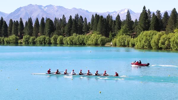 Hand-held shot of a team rowing on a lake in New Zealand Royalty-free stock video
