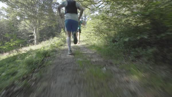 Slow motion shot of two men running in a forest Royalty-free stock video