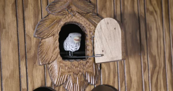 Close-up of a traditional German cuckoo clock Royalty-free stock video