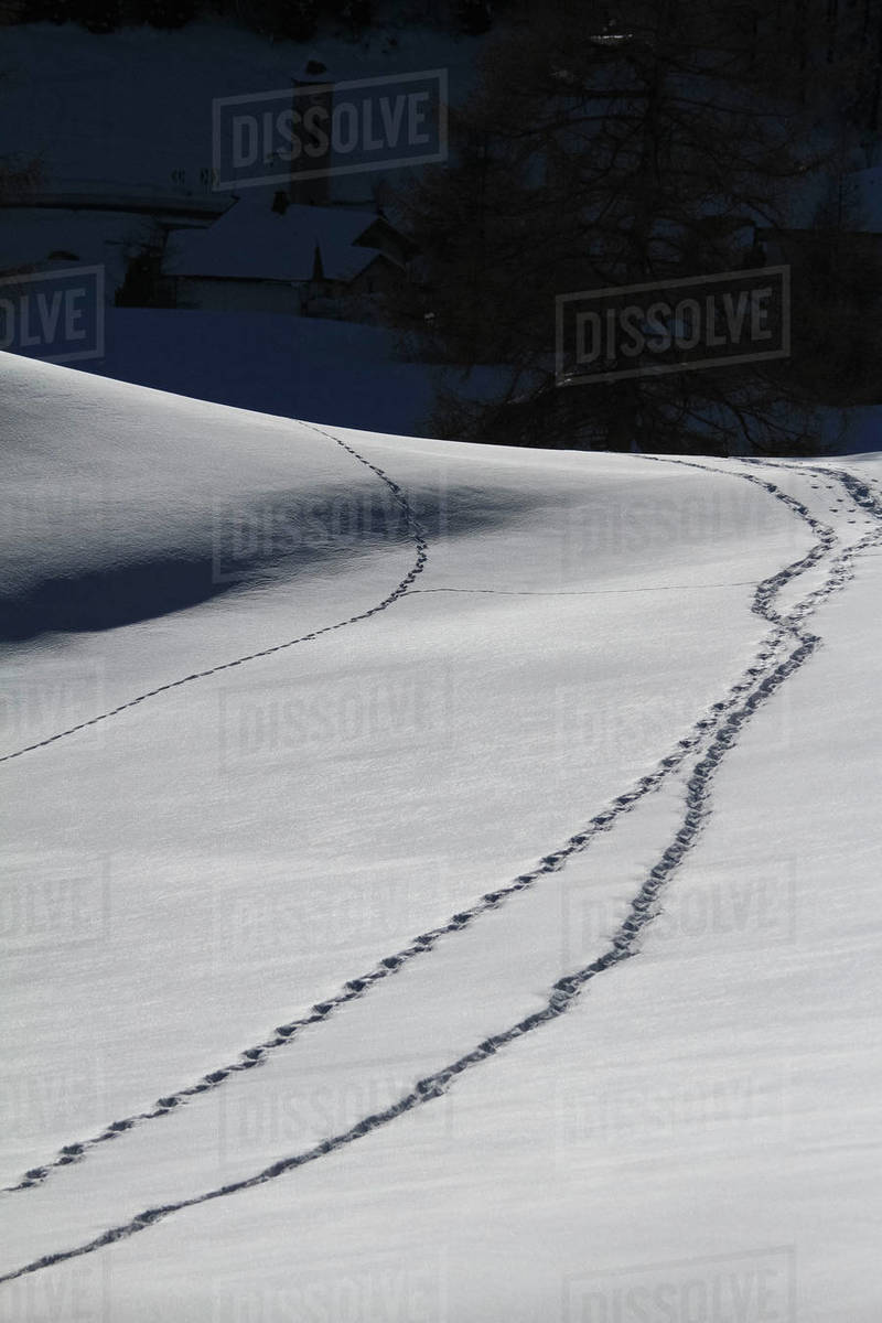 Tracks on snowy mountain slope Royalty-free stock photo