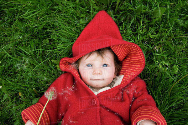 A baby with a dandelion Royalty-free stock photo